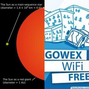 Gowex fum