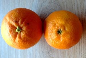 taronja i mandarina
